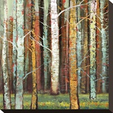 Brilliant Forest 1 Stretched Canvas Print by Julie Joy