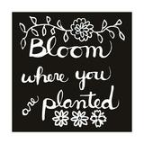 Blüte Giclée-Druck von Blenda Tyvoll