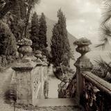 Lombardy VII Fotografisk tryk af Alan Blaustein