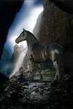 Dream Horses 089 Lámina fotográfica por Bob Langrish
