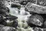 Jim Bales Rapids BW Fotografisk trykk av Bob Rouse