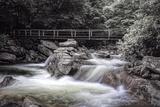 Chimney Tops Bridge2 BW Fotografisk trykk av Bob Rouse