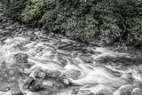 Bend in the River 2 BW Fotografisk trykk av Bob Rouse