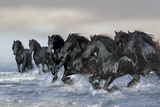 Dream Horses 019 Lámina fotográfica por Bob Langrish
