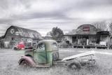 Green and Red BW Fotografisk trykk av Bob Rouse