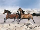 Dream Horses 039 Fotografie-Druck von Bob Langrish