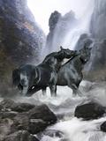 Dream Horses 065 Fotografie-Druck von Bob Langrish