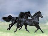Dream Horses 038 Lámina fotográfica por Bob Langrish