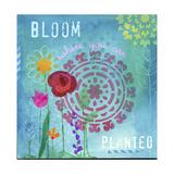 Blüte Giclée-Druck von Fiona Stokes-Gilbert