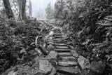 Chimney Tops Steps BW Fotografisk trykk av Bob Rouse