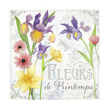 Fleurs III Giclee Print by Fiona Stokes-Gilbert