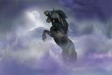 Dream Horses 056 Fotografie-Druck von Bob Langrish