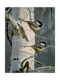 Chickadees at Dawn Reproduction procédé giclée par Bruce Miller