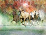 Dream Horses 022 Lámina fotográfica por Bob Langrish