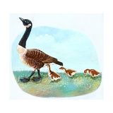 Mother Goose Giclee Print by Judy Mastrangelo
