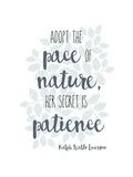 Nature Giclée-tryk af Erin Clark