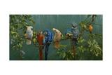 Perroquets Reproduction procédé giclée par Michael Jackson