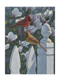 Cardinals Magnolias Giclee Print by Jeffrey Hoff