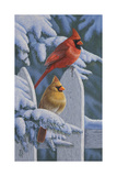Snow Cardinals Giclee Print by Jeffrey Hoff