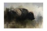 Abstract American Bison Giclee-trykk av Jai Johnson