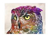 Owl Drawing Reproduction procédé giclée par Mark Ashkenazi