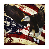 The Cost of Freedom ジクレープリント : ジェーソン・ブラード