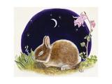 Sleeping Bunny Giclee Print by Judy Mastrangelo