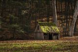 Rustic Glow Photographic Print by Natalie Mikaels