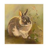 Rabbit in Columbine Giclee Print by Judy Mastrangelo