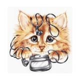 Wired Kitten Impressão giclée por Karen Middleton