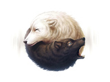 Yin and Yang Giclee Print by  JoJoesArt