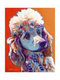 Poodle - Bonnie Reproduction procédé giclée par  Dawgart