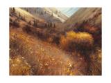 Flecks of Gold Giclee Print by Steve Henderson
