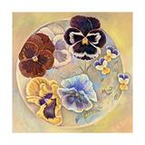 Pansies Giclee Print by Judy Mastrangelo