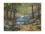 Glen Creek Waterfalls Lámina giclée por Peter Snyder