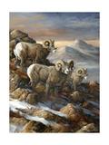 High Country Trio Lámina giclée por Trevor V. Swanson
