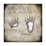 Moose Lodge 2 - Bear Tracks 2 Giclée-Druck von  LightBoxJournal