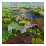 Deep Ridge Red Hill Reproduction giclée Premium par Allan Friedlander