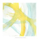 Luminosity II Premium Giclee Print by J. Holland