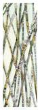 Lemongrass IV Premium Giclee Print by Jarman Fagalde
