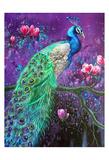 Botanical Peacock 1 Affiches par Lena Navarro