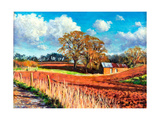 Country Barn, 2014 Reproduction procédé giclée par Tilly Willis