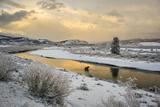 A Moose Fords Buffalo Fork River Near Grand Teton 写真プリント : Charlie Hamilton James