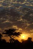 Sunset, Upper Vumbura Plains, Botswana Photographic Print by Anne Keiser