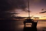 Pink Sunset over the Pacific Ocean with an Anchored Catamaran on Molokai, Hawaii Fotografisk trykk av Jonathan Kingston