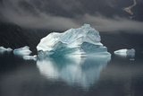 Large Icebergs in Scoresby Sound, Greenland Fotografisk tryk af Raul Touzon