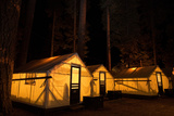 Tent Cabins Glow at Curry Village in Yosemite National Park Fotografisk tryk af Dmitri Alexander