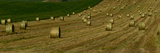 Hay Bales on Wheat Field Photographic Print by Raul Touzon