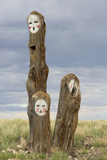 Painted Faces on Trees in the Navajo Reservation, Arizona Reproduction photographique par John Burcham