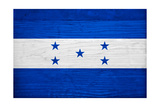 Honduras Flag Design with Wood Patterning - Flags of the World Series Art by Philippe Hugonnard